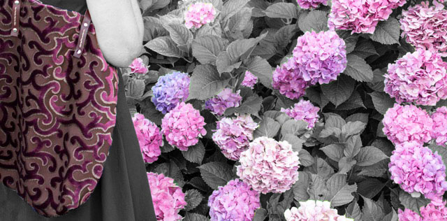 Violette b/n